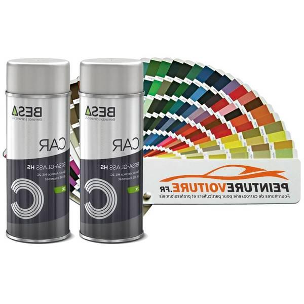 Bombe de peinture : livraison gratuite - haute performance - performant